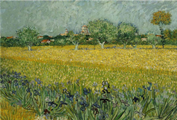 Title Field with Flowers near Arles